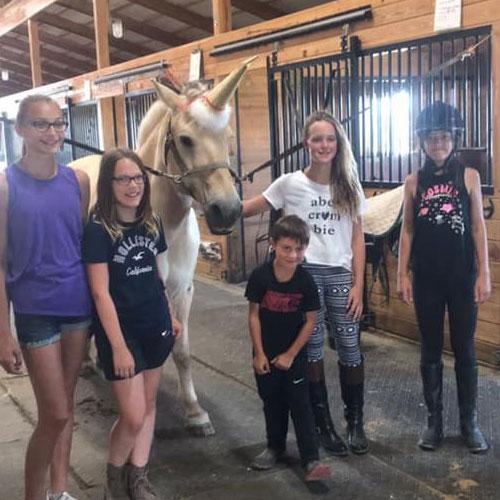 Horse Riding Summer Camp Buffalo Ny Brookfield Farms