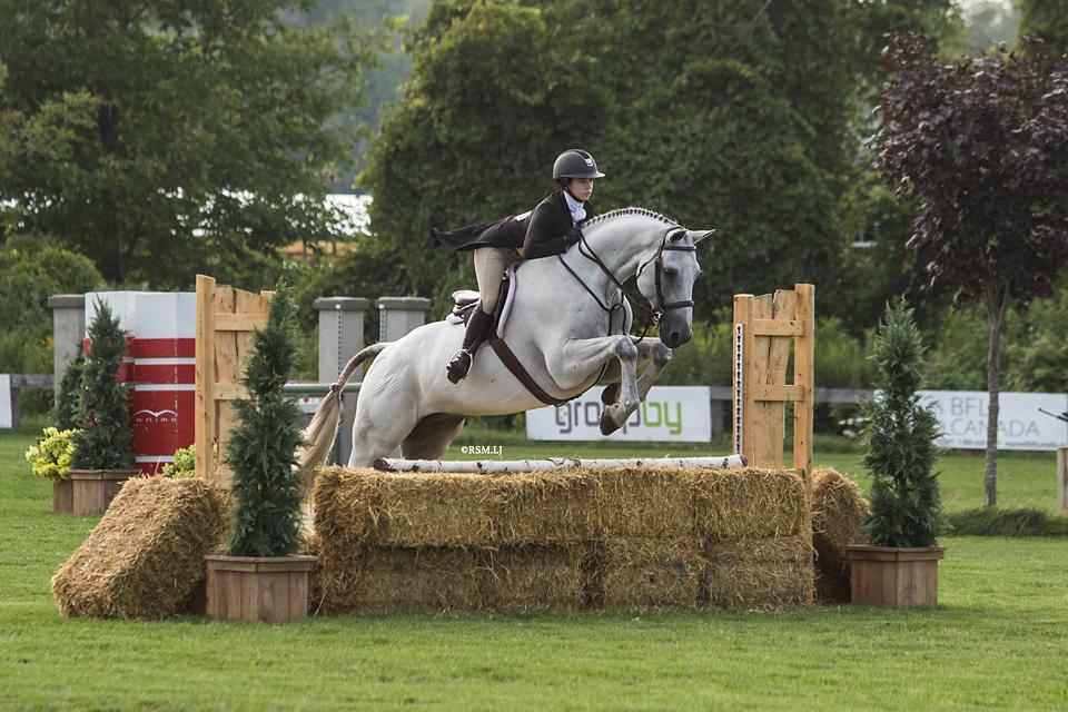 Horse Riding Shows Brookfield Farms Equestrian Center